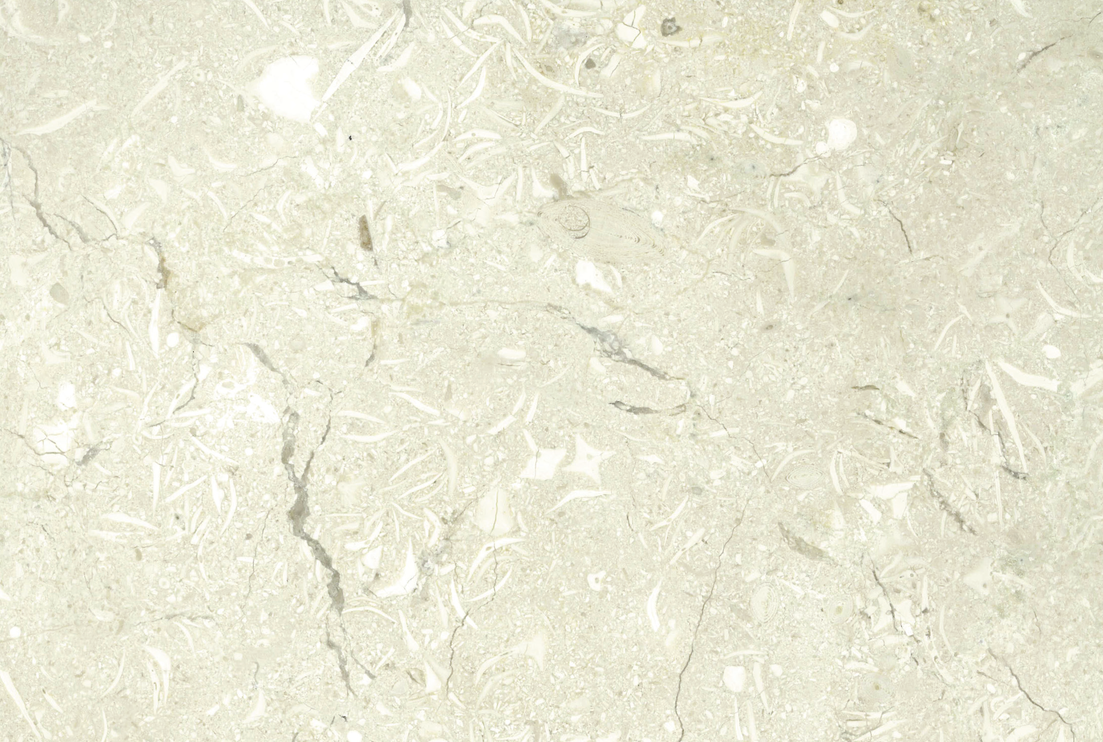 Reach Holy Land - Marble & Stone : Our Marble & Stone Collection - RH 11 - Cold Ice